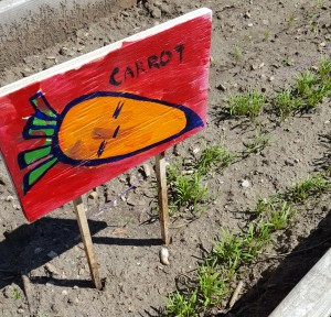 CarrotSign